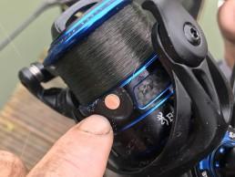 Sphere reel line clip